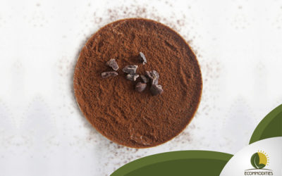 Cacao Powder For Bakery Industry