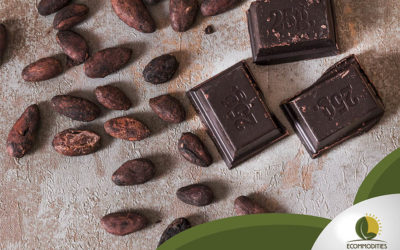 How Is Cacao Turned Into Chocolate?